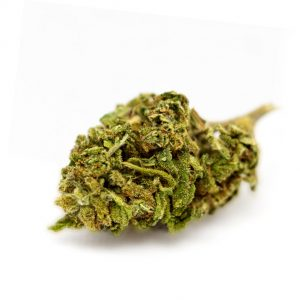 CBD Flowers CannaBudz Amnesia Haze 14% CBD 2g Bud